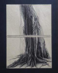 Ink on Paper, 30 x 40 cm, Dec 2014- Mar 2015