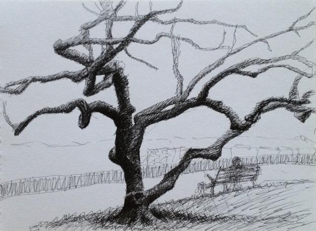 Tree,Geneva 18:3:15
