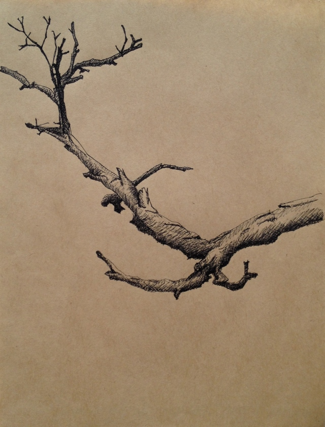 Branching Out, Xindian, Ink on Brown Paper, 19.5 x 27cm, 2016 by David Lloyd