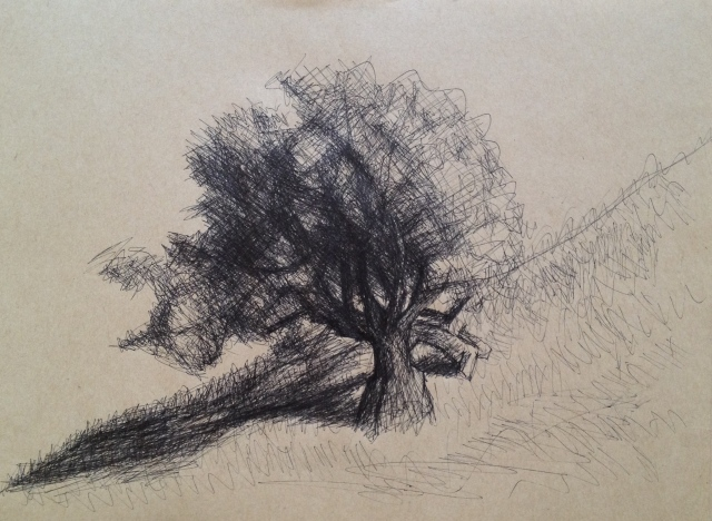 Hillside Tree and Shadows San Jose, California, 27 x 19.5cm, Ink on Brown Paper, 6:7:17, by David Lloyd