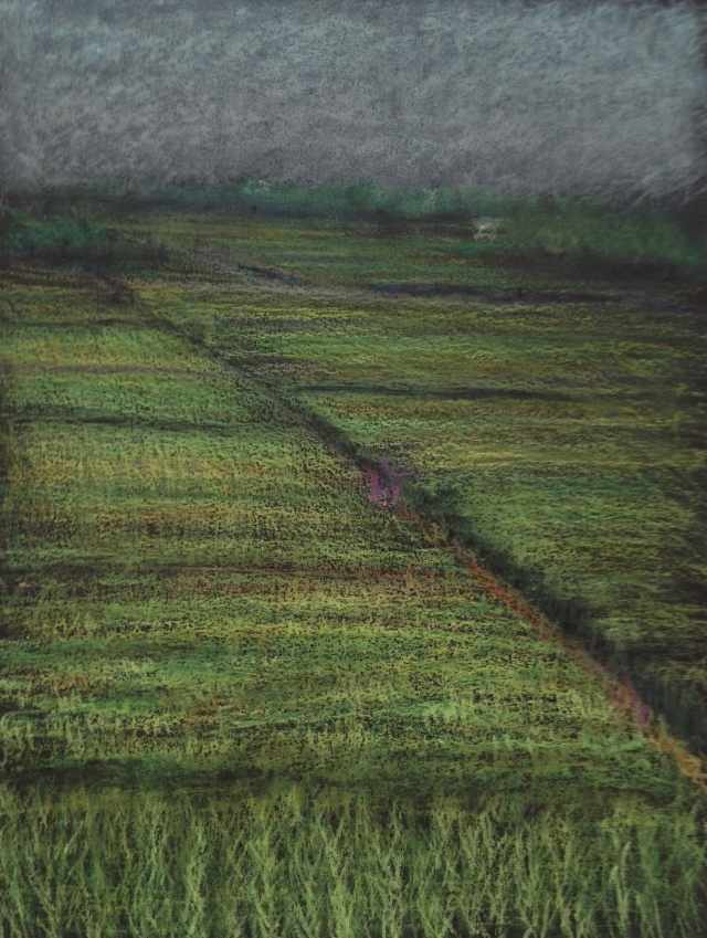 Ricefields, Yilan, 23 x 30.5 cm, Oil Pastel on Black Paper, 24:5:18 by David Lloyd